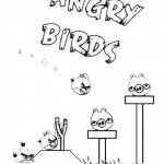 Angry Birds (7)