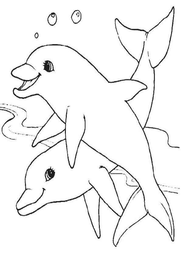 ausmalbilder Delfine
