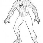 Spiderman – 3