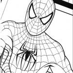 Spiderman – 4