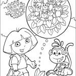 Dora 6