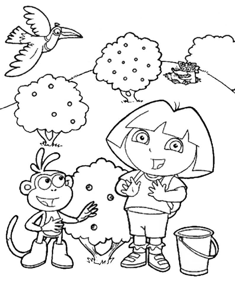 Dora und Boots sammeln Früchte
