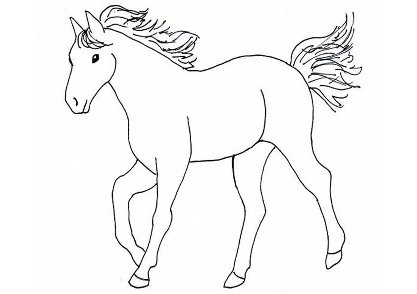 Ausmalbilder Pferde 4 Ausmalbilder