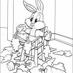 Baby Looney (4)