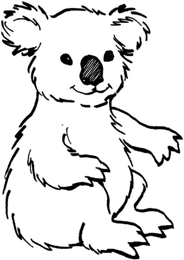 koala ausmalen