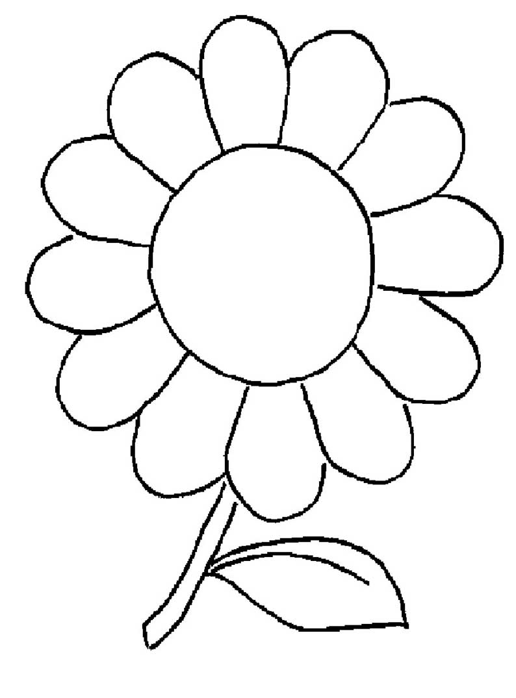 Gänseblümchen ausmalen
