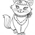 Katzen 9