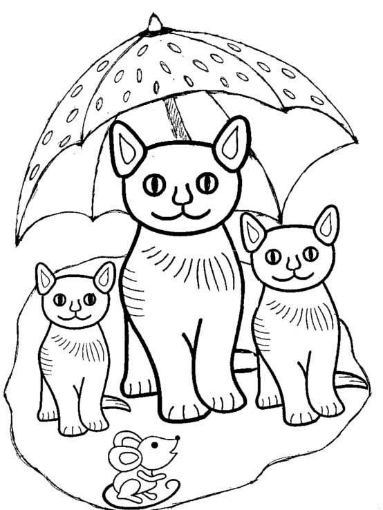 Katzen mit Sonnenschirm