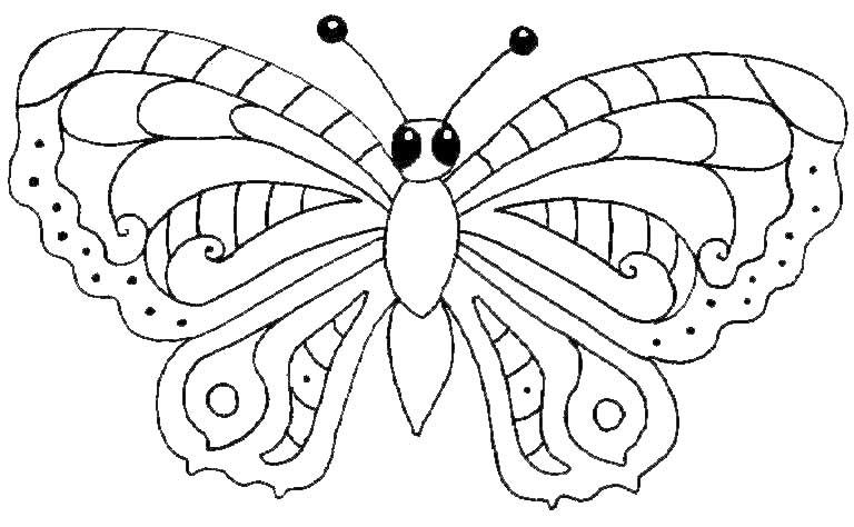 malvorlagen  Schmetterling 2