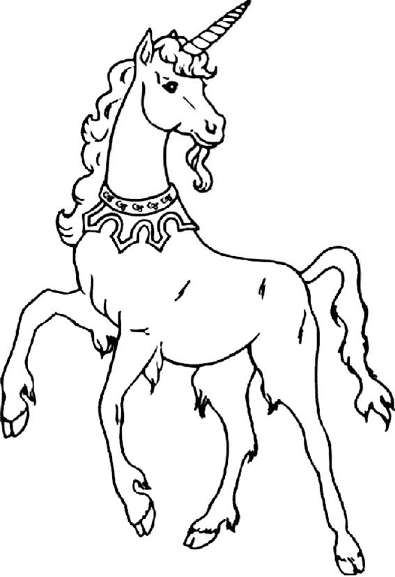 Zeichnung Nr. 5 einhorn zum malen