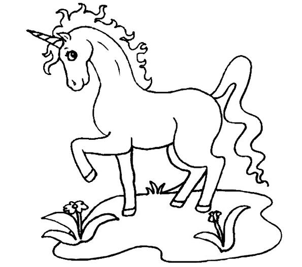 Zeichnung Nr. 6 einhorn zum drucken