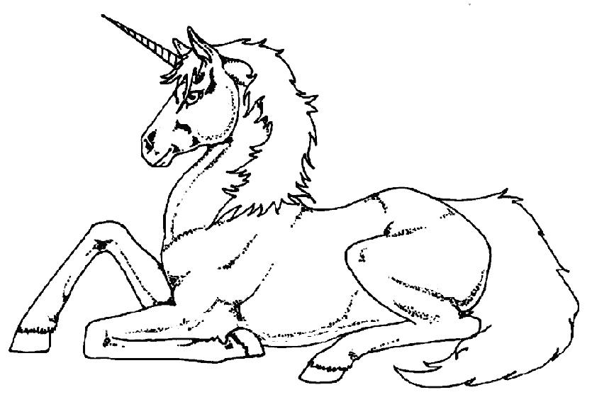 Zeichnung Nr. 8 von Einhorn ausmalen