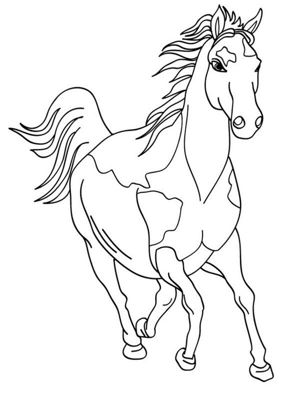pferd malvorlagen 32