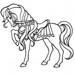 Pferde 34
