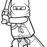 Ninjago 9