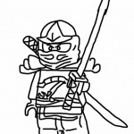 Ninjago 10