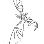 Drachenzähmen (11)