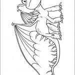 Drachenzähmen (15)