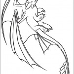 Drachenzähmen (16)