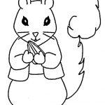 Eichhörnchen (5)